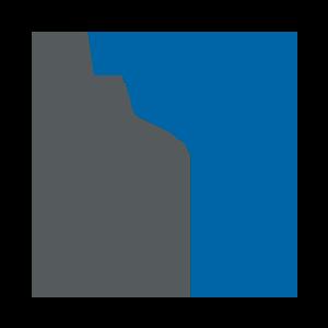 Crecimiento empresarial | Netzer Consulting